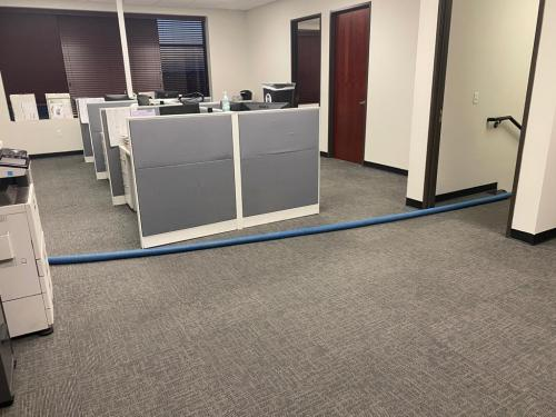 ALTA JANITORIAL SERVICES 02138