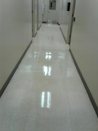 ALTA JANITORIAL SERVICES 00810