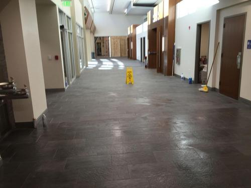 ALTA JANITORIAL SERVICES 01293